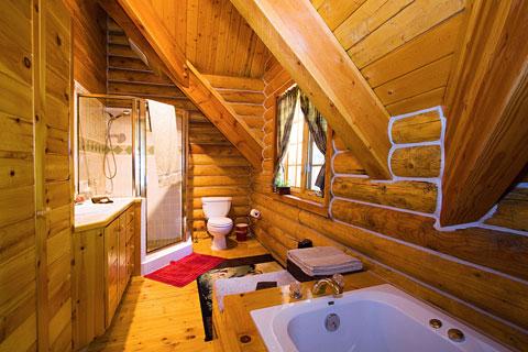 Dřevo je 100% recyklovatelný materiál a především obnovitelný. Taktéž  výstavba srubu má díky malé produkci odpadu a nízkých nákladů na přesun  materiálu ... f450908677